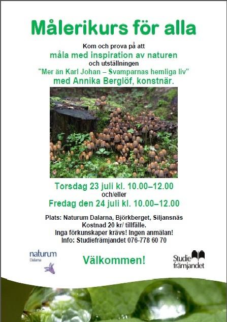 Målerikurs för alla i Naturum med Annika Berglöf