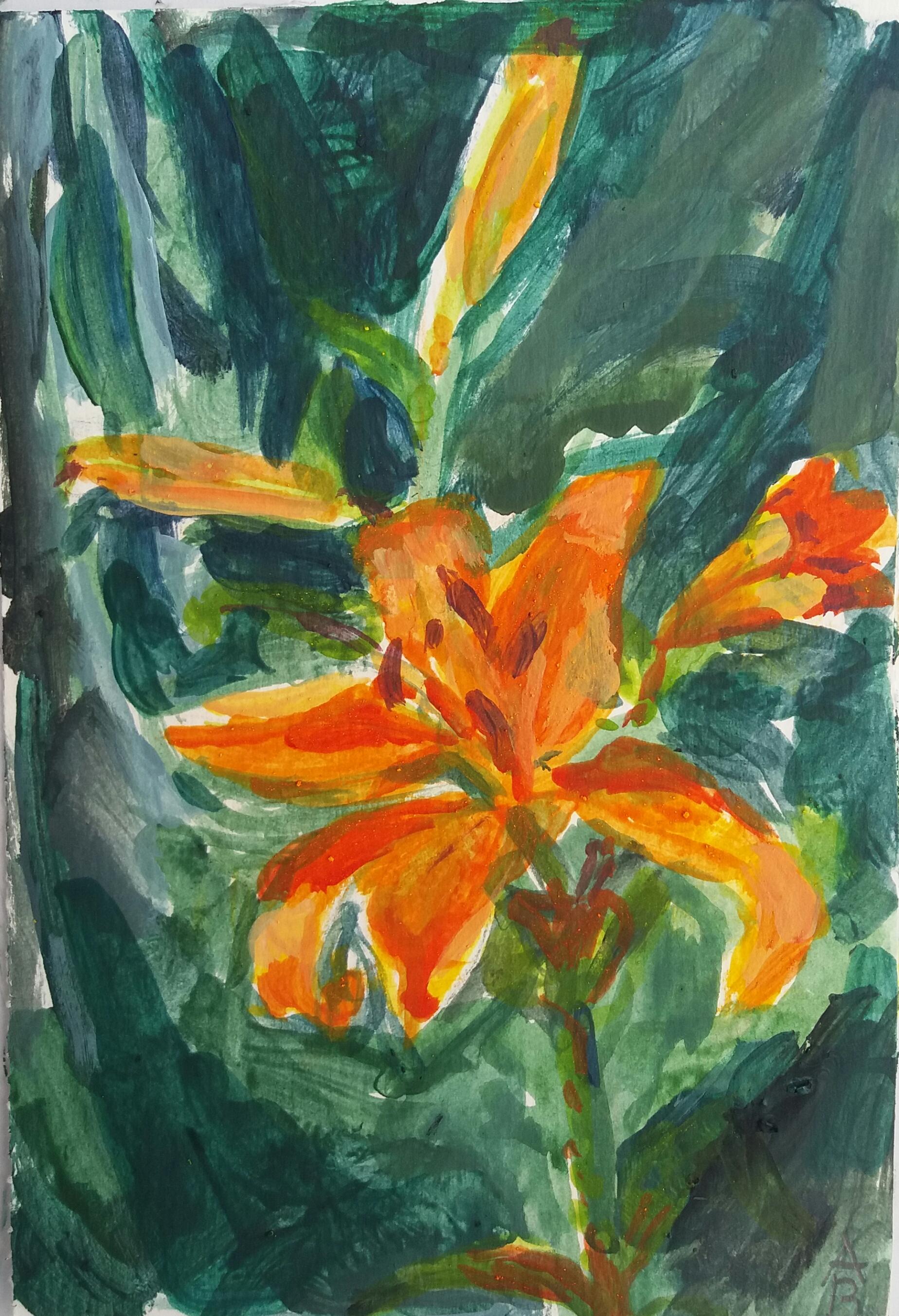orange lilja